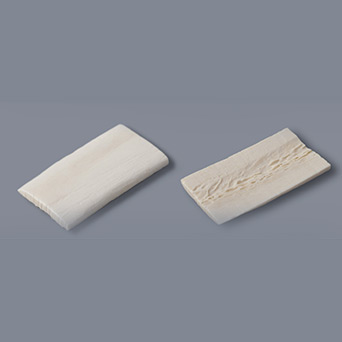 冷冻干燥骨(LPB)- 骨块(皮质)